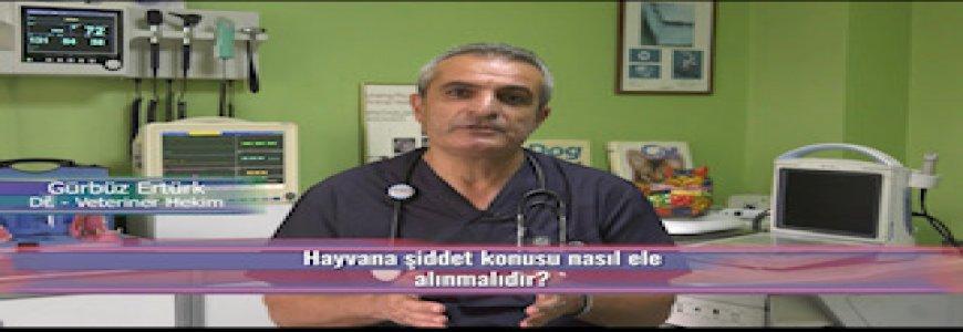Ankara Büyükşehir Belediyesi İnternet Televizyonunda ait tanıtım resmi
