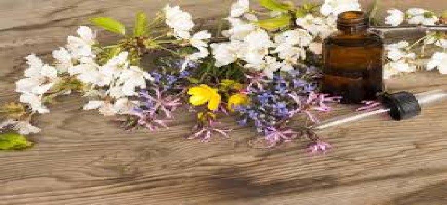 Bach Çiçekleri Terapisi